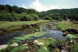Domenica 7 giugno: la Riserva Naturale Monterano
