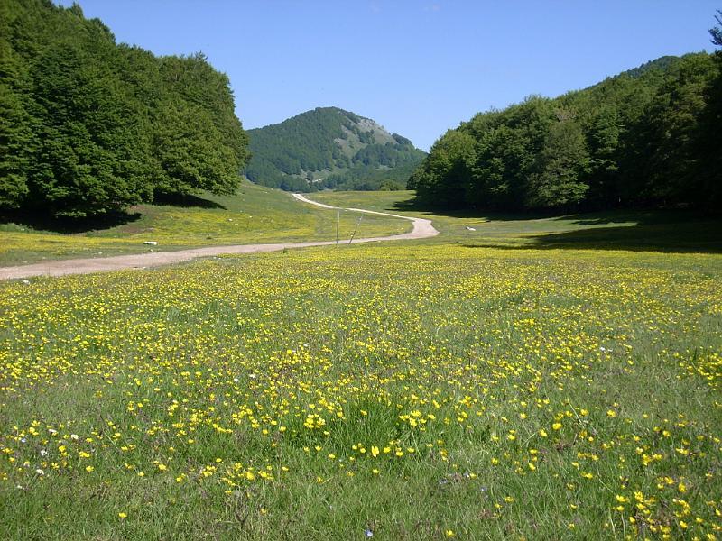 Domenica 9 giugno: camminata meditativa nel Parco Naturale Monti Simbruini