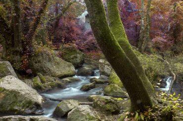 Parco Regionale Valle del Treja – da Mazzano Romano a Calcata