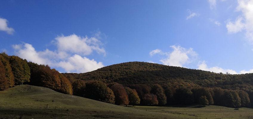 Campaegli, Parco Regionale Monti Simbruini